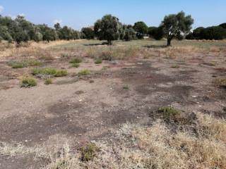 İki tarafı yol depo veya organik tarıma uygun yer.