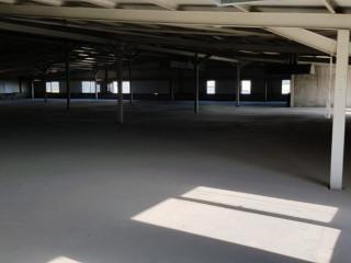 Tuzla Deri OSB de kiralık 1500 m2 Fabrika & İmalathane