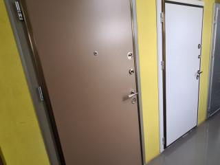 Özel Renk Çelik kapı
