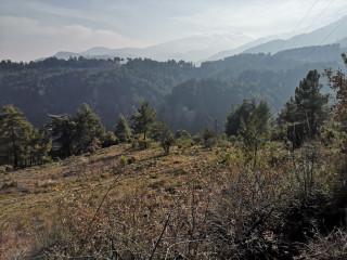 Doğayla İç içe 9100m2 Vadi Manzaralı Arazi