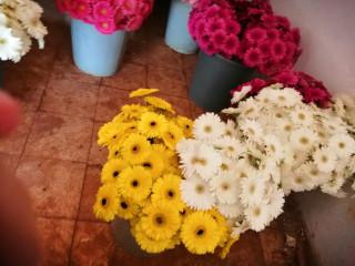 Kesme çiçek