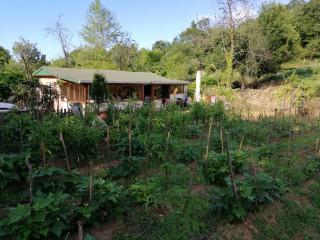 Şile'de Tarıma Uygun, Konutlu, Doğayla İç İçe, İstanbul'a Yakın Arsa