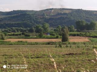 Mudanyanın çekrice köyünde 1569 m2 İçinde Evi Olan bağ evi