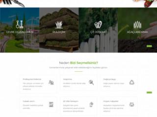 Web Tasarım ve Yazılım çözümleri