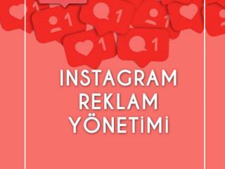 %100 Organik Instagram Takipçisi sağlanır