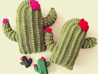 kaktus kirlent