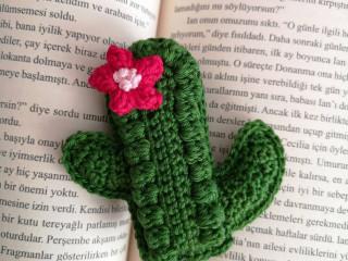 kaktus anahtarlik