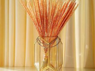 Pirinç mumluk & çiçeklik
