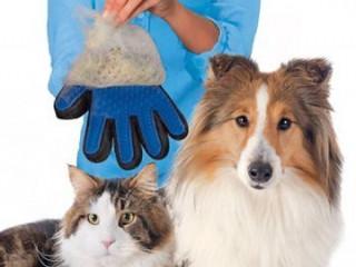 Kedi Köpek Tüy Toplayıcı Eldiven