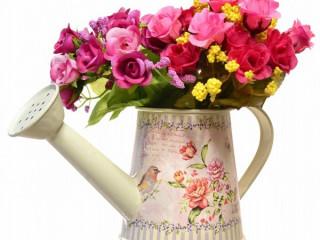 Gül Çiçek Sulama Kabı ve Saksı -