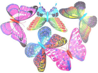 5 Adet Büyük Boy Saksı Kelebekleri