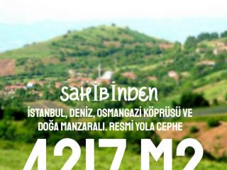 4217M2 İSTANBUL, DENİZ, KÖPRÜ VE DOĞA MANZARALI
