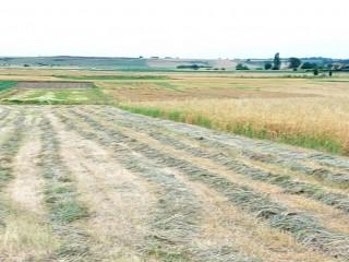 Lüleburgaz'da Yatırımlık
