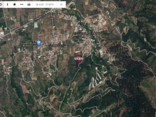Kemalpaşa Sinancılar Mahallesi 8239 m² Satılık Tarla  Satılık Tarla