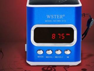 Wster-215 Şarjlı Hafıza Kartı Girişli FM Radyolu USB Hoparlör