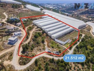 Alanya Kargıcak'ta Satılık Arsa & Land for Sale in Kargıcak Alanya