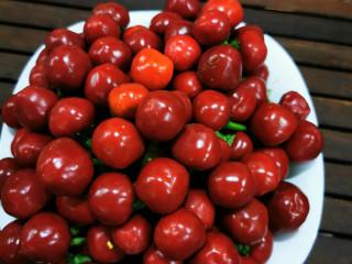 Red Hot Chery Geleneksel Acı Biber Fidesi