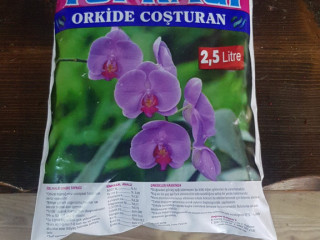 Orkide topragi